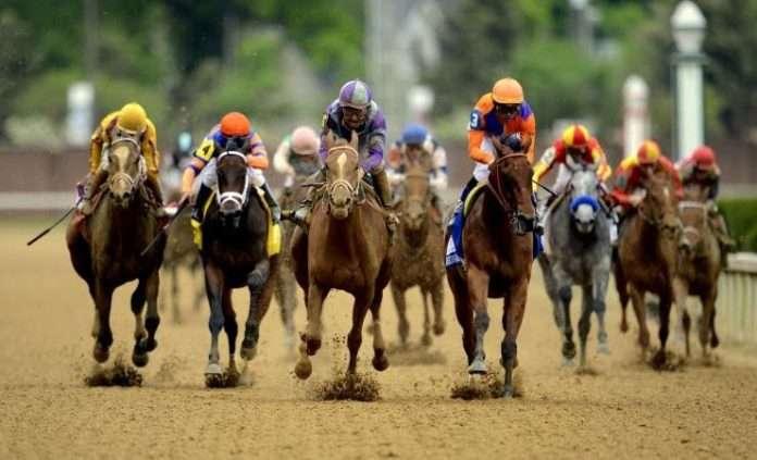 Ippodromos nicosia betting how to bet on greyhounds