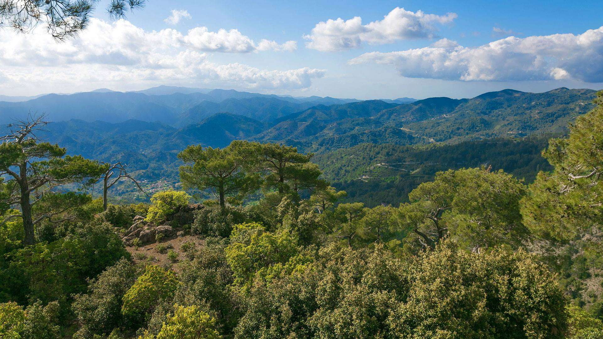 Troodos Mountains - Mount Olympus