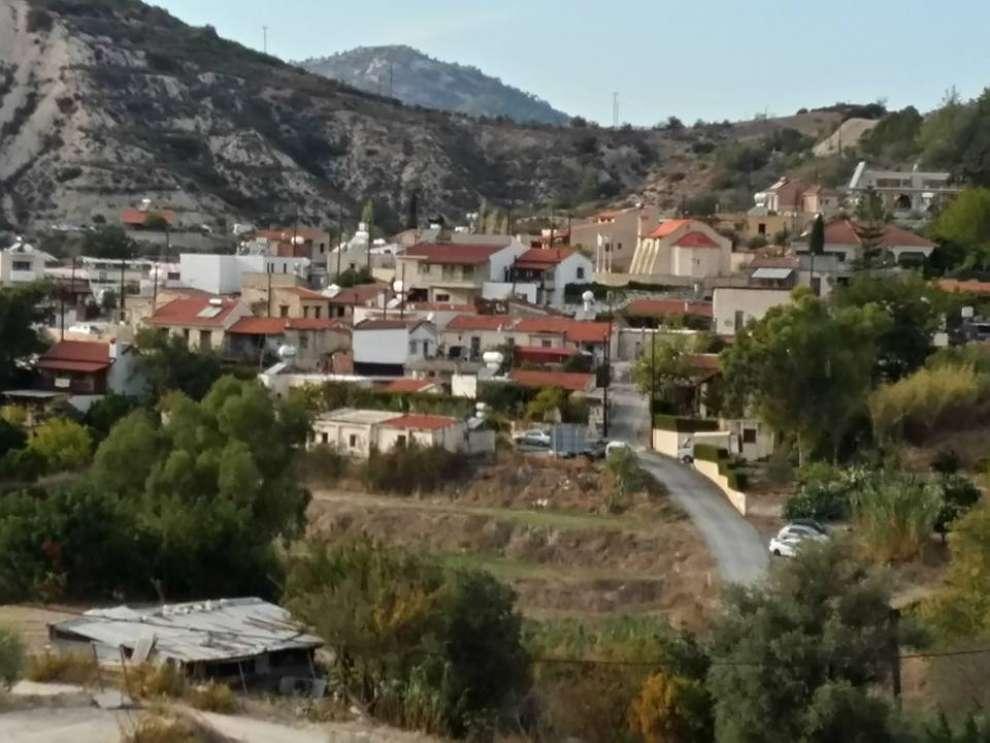 Image result for αψιού λεμεσός