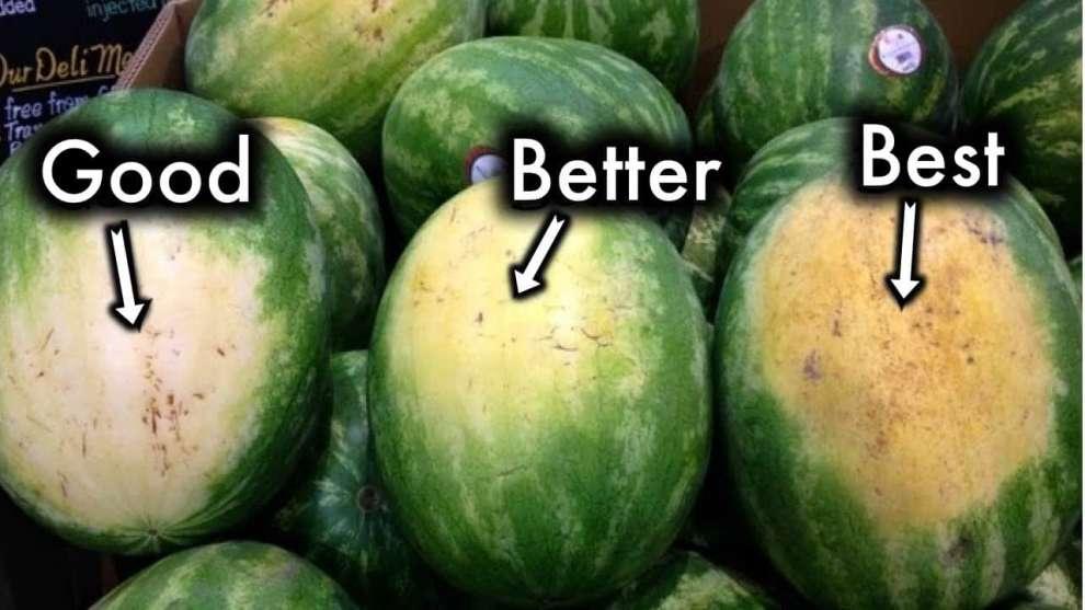 Арбуз - наше любимое летнее лакомство - 5+1 совет: как выбрать лучший арбуз!