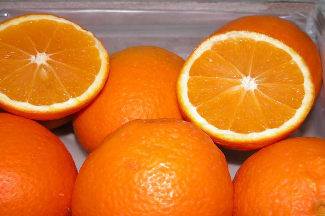 Portokalada Fresh Homemade Orangeade The Cypriot