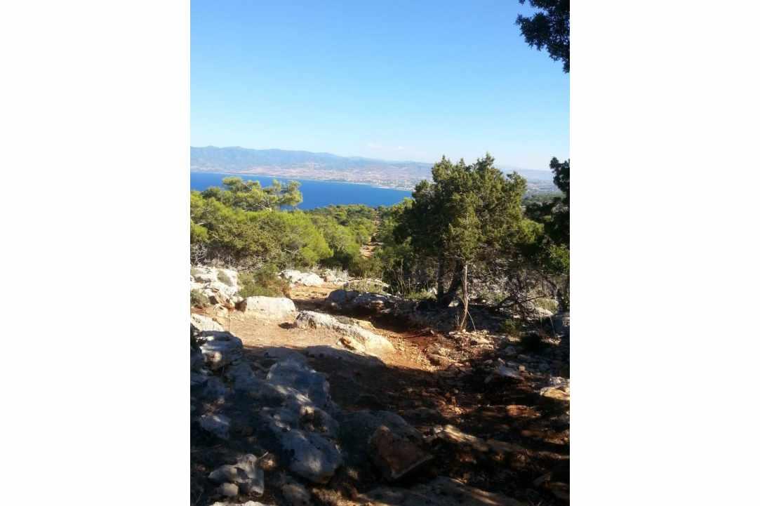 Path of Nature - Aphrodite & Adonis
