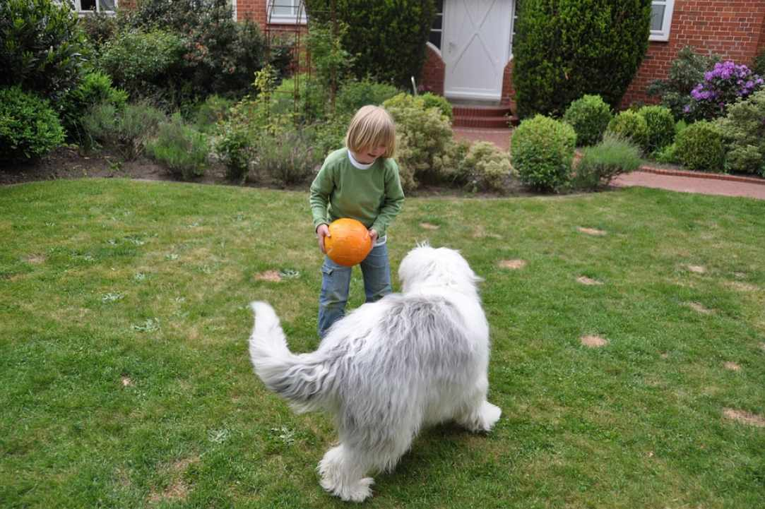 The importance of play in children's health and how play therapy helps children overcome difficulties