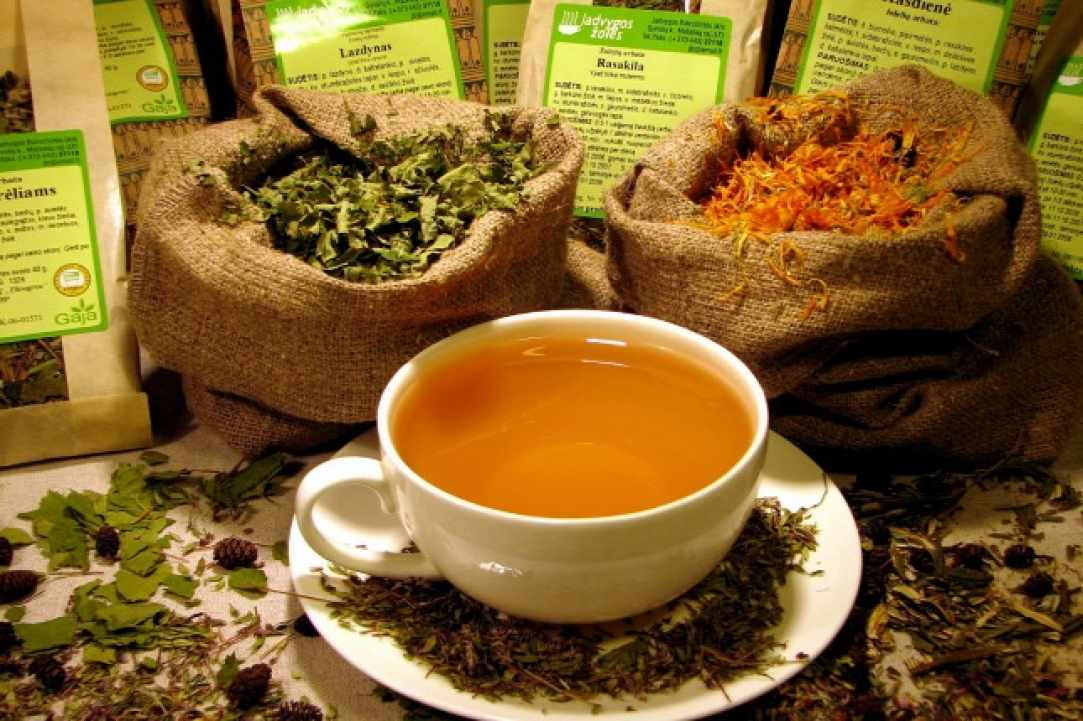 Herbs and Spices of Cyprus - more than 600 different types exist in Cyprus