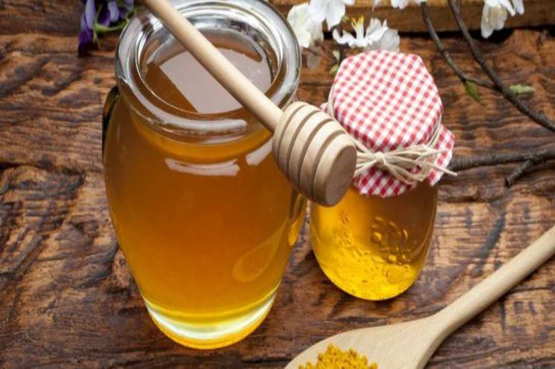 1st Pancyprian Honey & Beekeeping Festival