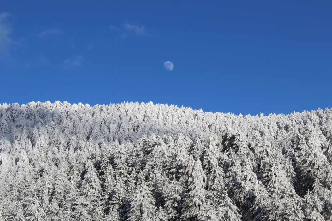 Snowy Mountains of Troodos