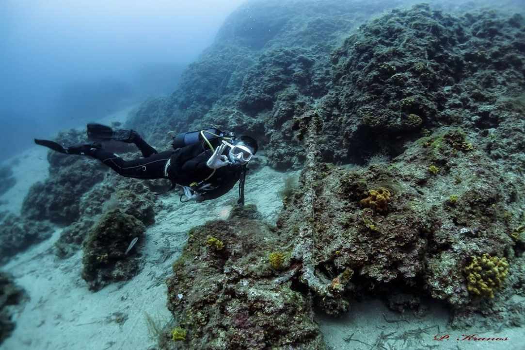 PADI Women's Dive Day 2017