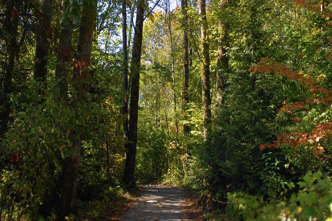 Nature Walk With LMCG: Kritou Terra Waterfall