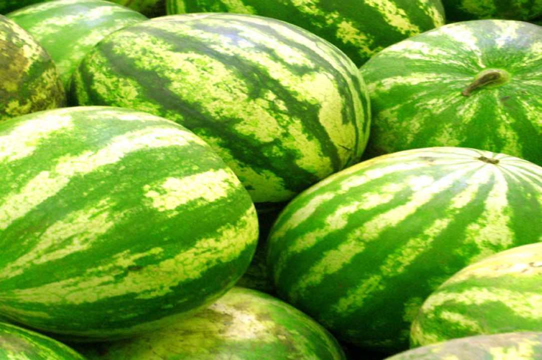 12th Watermelon Festival