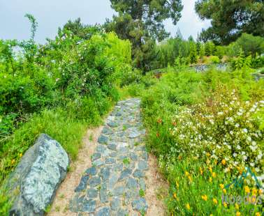 The magnificent Troodos Botanical Garden «Α.G. Leventis»