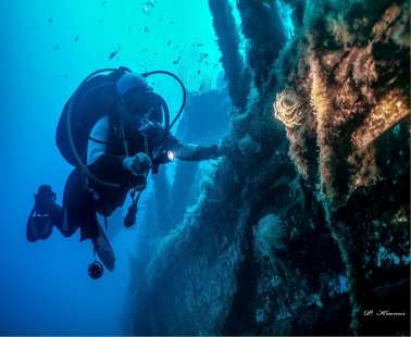 The Alexandria Wreck Cyprus