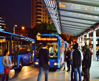 Public Transports: Buses