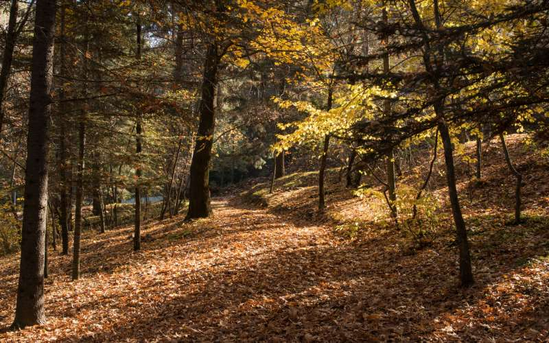 Finikaria Hiking Trail