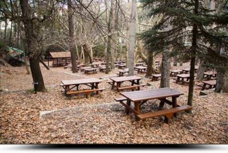Platania Camping Site